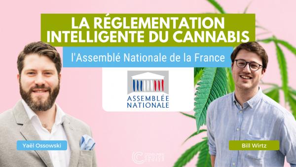 La réglementation intelligente du cannabis: Yaël Ossowski et Bill Wirtz devant l'Assemblée nationale